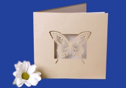 Zaproszenia - Ślubne - Laser Oryginal - Zaproszenie Alicjus 14
