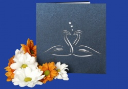Zaproszenia - Ślubne - Laser Oryginal - Zaproszenie Alicjus 16