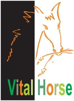 Usługi - Projektowanie - Logotyp - Vital Horse